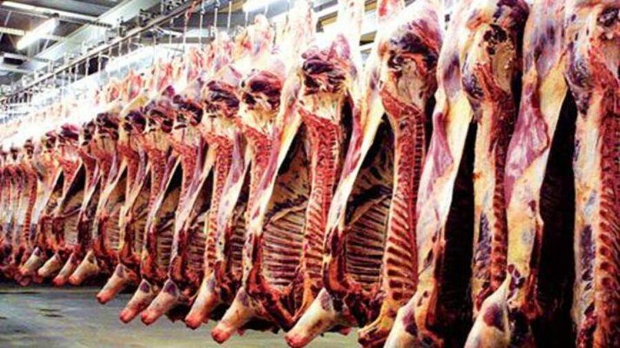 دعوة من طرف المكتب الجهوي لتجار اللحوم الحمراء بالتقسيط بمدن جهة الدارالبيضاء سطات وضواحيها