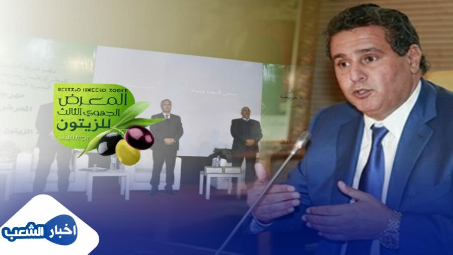 مهرجان ومعرض الزيتون بجرسيف ومشاريع فلاحية لم ترى النور